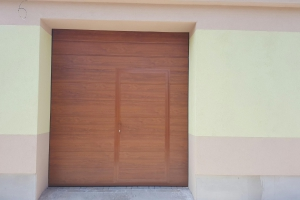 brana-s-dverami29
